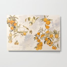 Fruit trees, Edward Lear Metal Print
