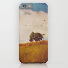 A Beautiful Afternoon iPhone 6s Slim Case