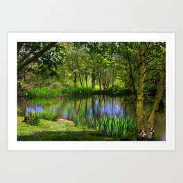 Spring views Art Print