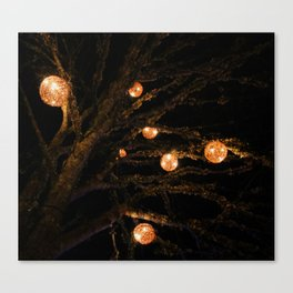 lit up for Christmas Canvas Print