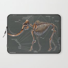 Mammuthus Primigenius Skeletal Study Laptop Sleeve