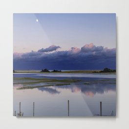 Before the Storm Comes Metal Print
