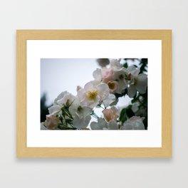 Roses and Raindrops: White Framed Art Print