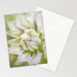 Pale Pink Clematis Stationery Cards