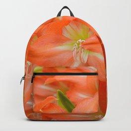 Pattern #6 Backpack