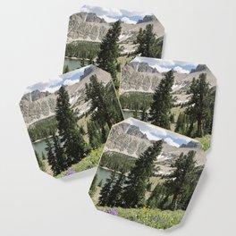 Nevada Summer Wildflowers Coaster