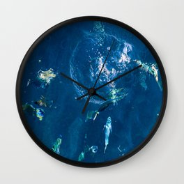 Fish Play Wall Clock