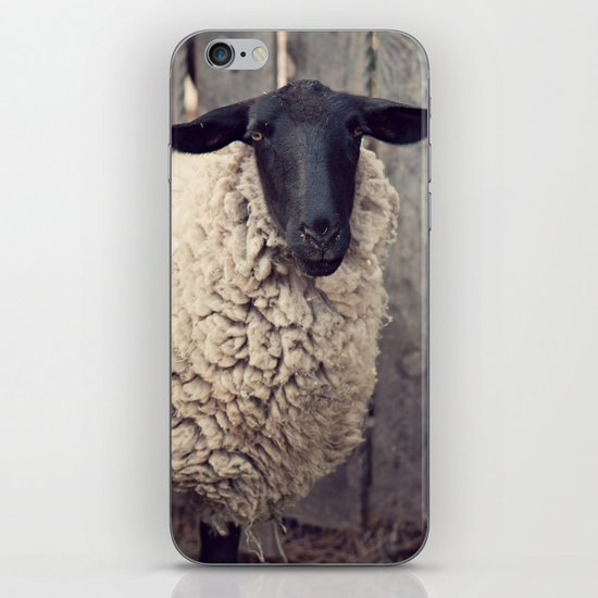 have you any wool? iPhone & iPod Skin