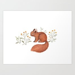 Furry Squirrel Art Print