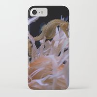 sea horse iPhone & iPod Cases featuring Sea Horse by Starr Cuevas Photography