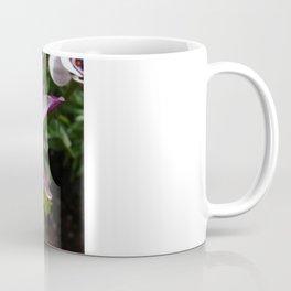 Purple and White Osteospermum Coffee Mug