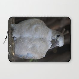 Baby Collared Dove #2 Laptop Sleeve