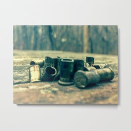 .22 bullets Metal Print