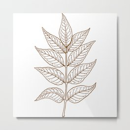 Ash Leaves In Brown Minimalist Nature Metal Print