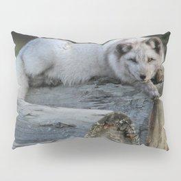 Arctic fox resting on logs Pillow Sham