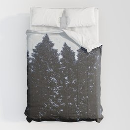 Cold Storm Comforters