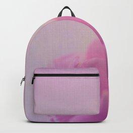 Simplicity V Backpack