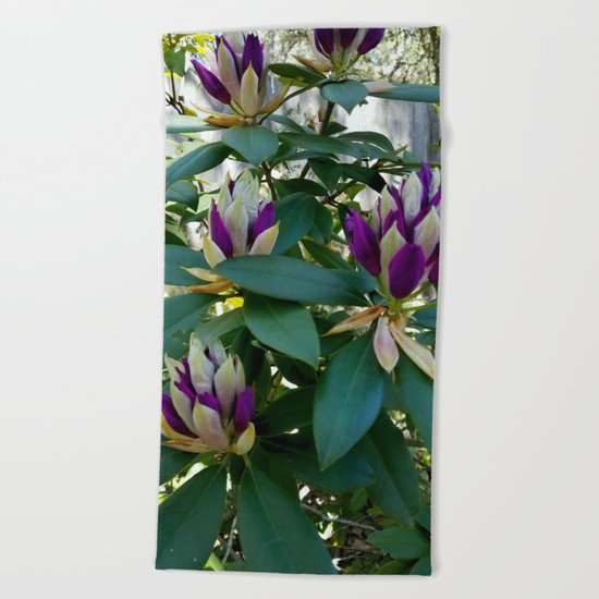 Rhododendrons Ready to Bloom Beach Towel