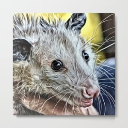 Impressive Animal - cute possum Metal Print