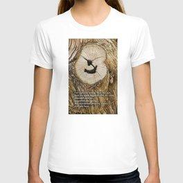 Kiwook T-shirt