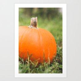 bright little pumpkin Art Print
