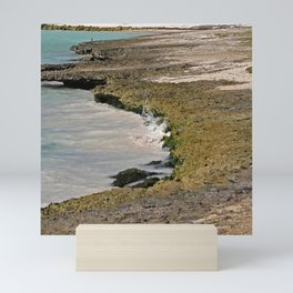 Rocky Beach Sea Shore Mini Art Print
