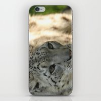 snow leopard iPhone & iPod Skins featuring Snow Leopard by Sean Foreman