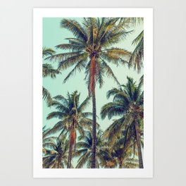 Palms Away - Study 40 Art Print