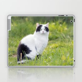 Black and white cat Laptop & iPad Skin
