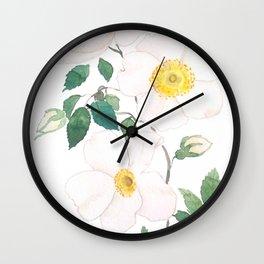 white wild Rosa rubiginosa watercolor Wall Clock