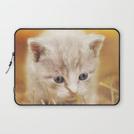 Kitten | Chaton Laptop Sleeve