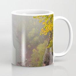 Tettegouche State Park, Minnesota 8 Coffee Mug