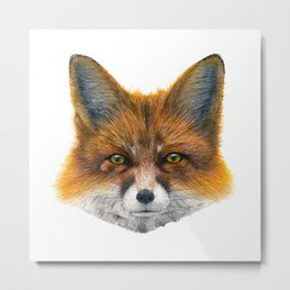 Fox face - Painting in acrylic Metal Print
