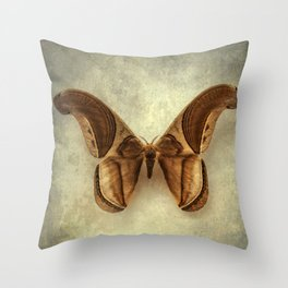 Furry brown beauty Throw Pillow