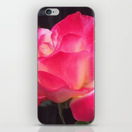 Grandma's Beautiful Rose Untouched iPhone Skin