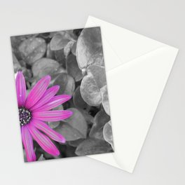Purple Shot Stationery Cards