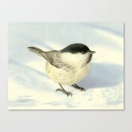 Chilly Chickadee Canvas Print