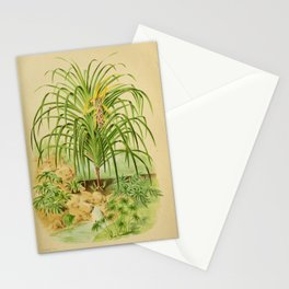 Tree pandanus furcatus10 Stationery Cards