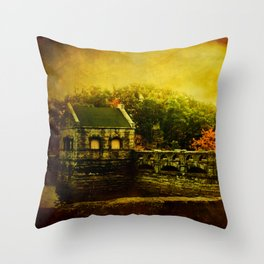 Dam Wall Throw Pillow