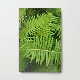 GREEN FERN POETRY Metal Print
