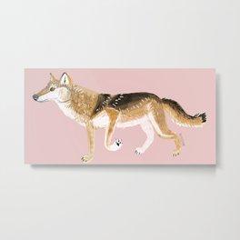 Honshu wolf (c) 2017 Metal Print