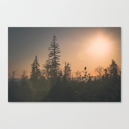 Last October Light Canvas Print