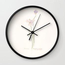 Brodiaea capitata Wall Clock