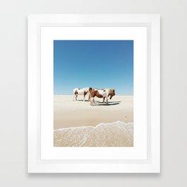 Summer Shore Horses Framed Art Print