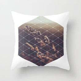 Hexagonal Barley - Sacred Geometry Throw Pillow