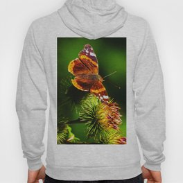 Butterfly on a thistle blossom Hoody