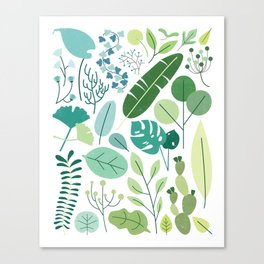Botanical Chart Canvas Print