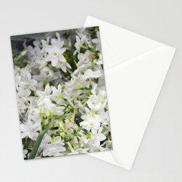 Jonquils Stationery Cards