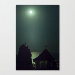 Southern night Canvas Print