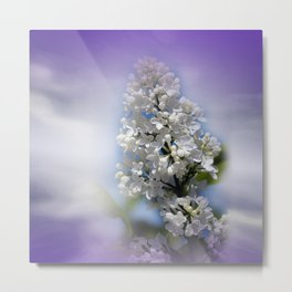 white lilac on textured background -a- Metal Print